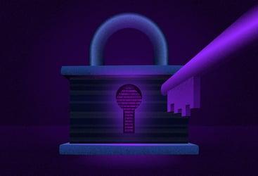 Software behind a lock and key